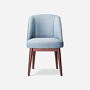 Elegant Blue Chair